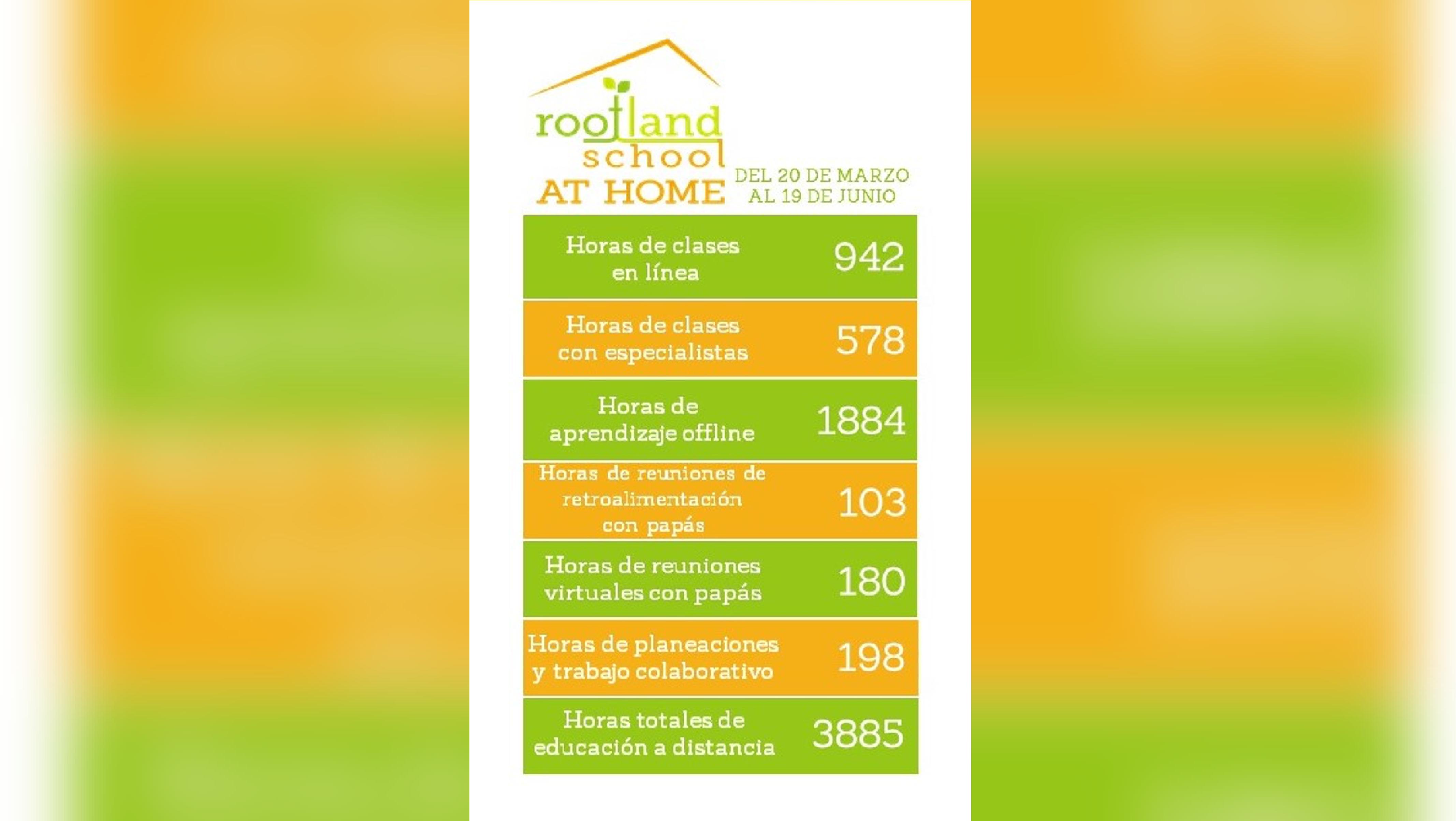 Rootland-school-colegios-mexico-01